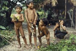 индейцы Пираха