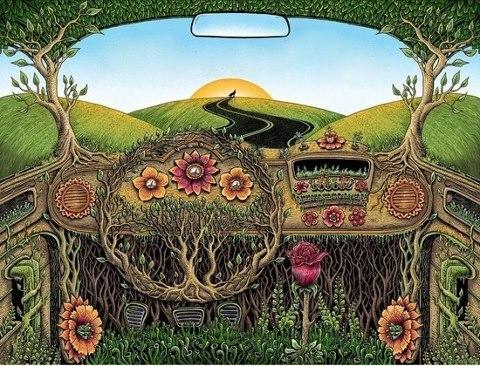 взгляд из машины
