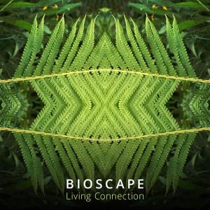 Bioscape - Living Connection
